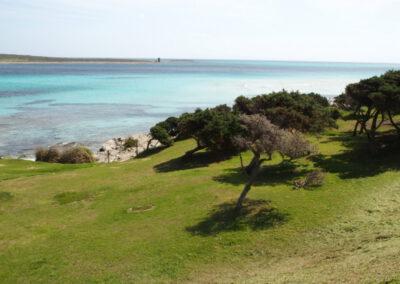 plage de la Pelosa