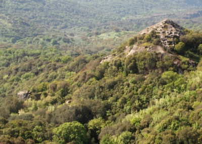 Punta Biancas