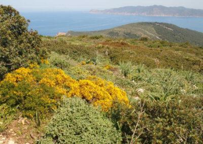 Portfolio Sardaigne occidentale, séjour du 15/04/2018