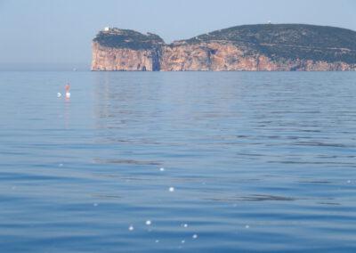 Sardaigne, punta Caccia