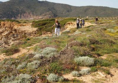 randonnée dans la baie de Capo Ferro