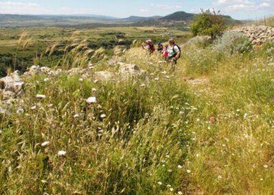 Sardaigne, Logudoro, Monte Pelao