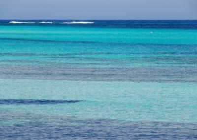 Sardaigne, l'Asinara