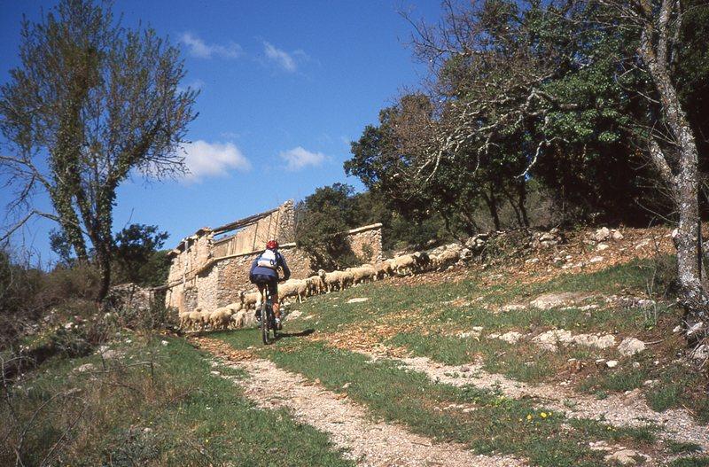 les 4 saisons d'Espigoule, VTT en Provence verte