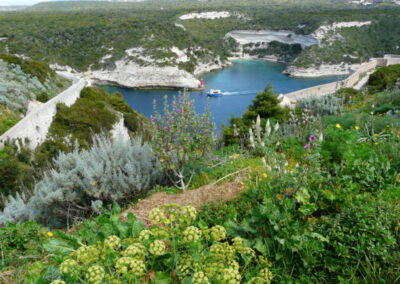 Portfolio séjour randonnée en Corse du Sud, printemps 2015