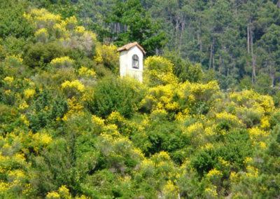 Portfolio Vallée de la Nervia, séjour de juillet 2013