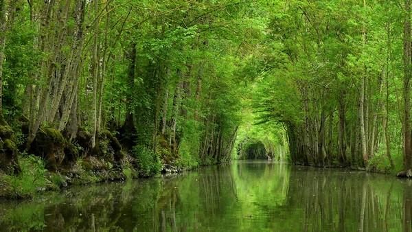 Voyage en Vendée