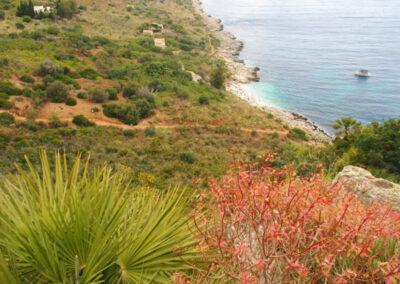 Portfolio Sicile Occidentale, séjour du 11/06/2018