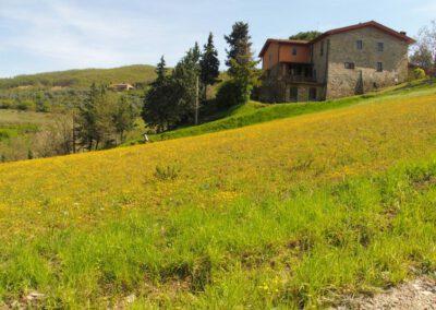 Portfolio Toscane, séjour du 18 avril 2019